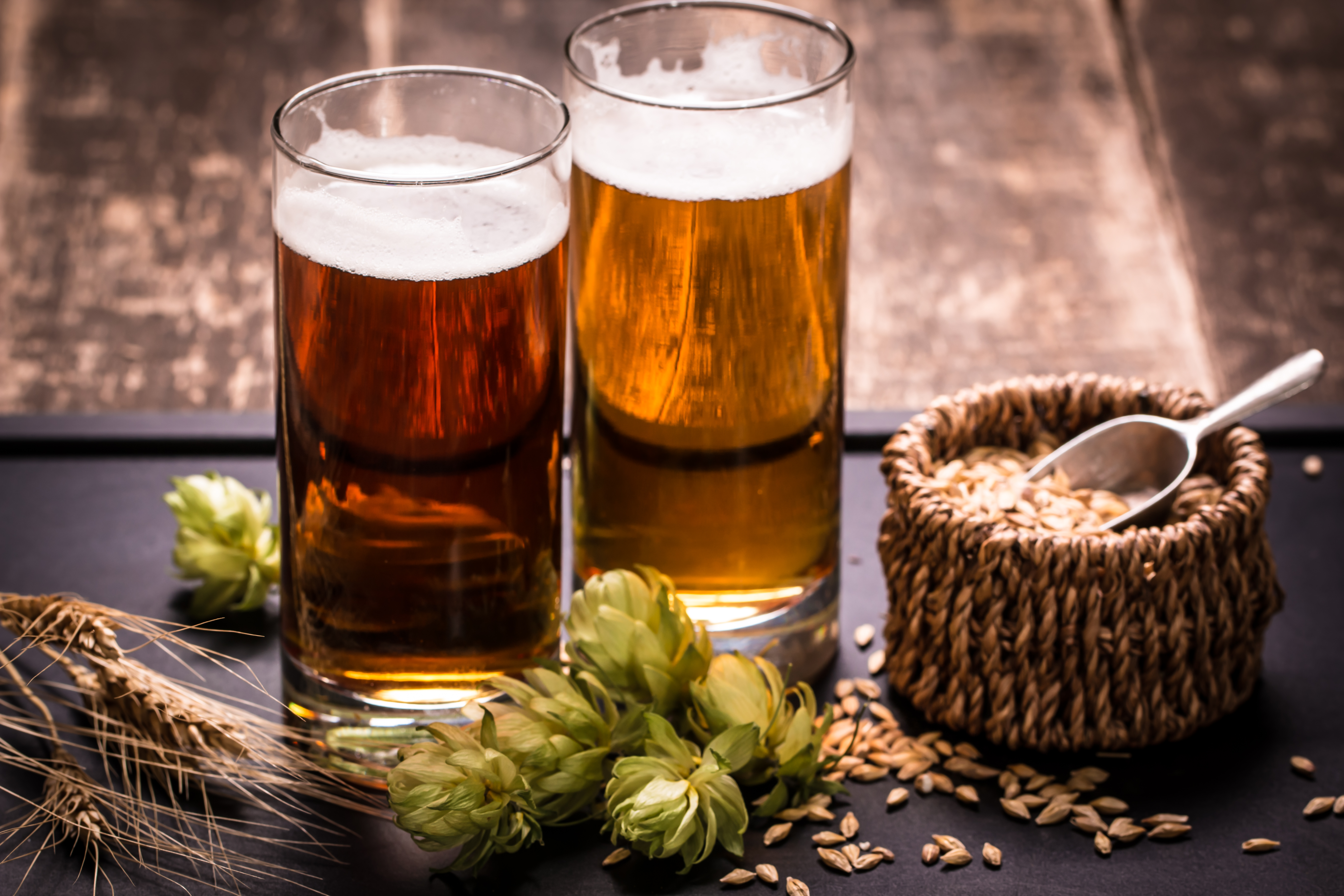 Craft Beer Brewery Tour in Green Bay Wisconsin