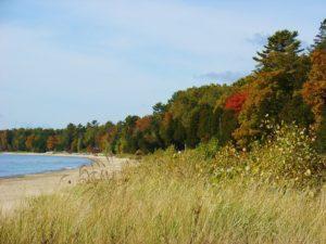 Fall Foliage in Green Bay, Wisconsin